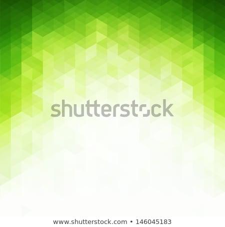 Absztrakt zöld mértani technológia vektor háromszög Stock fotó © fresh_5265954