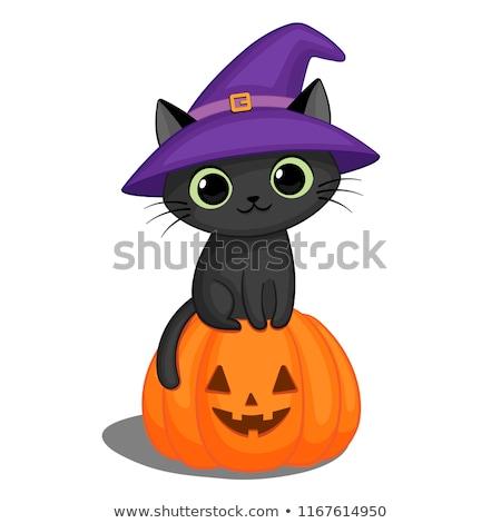 Witches Hat Black Cat Cartoon Character Stock photo © Krisdog