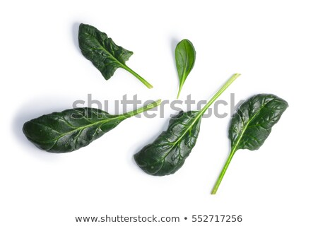 Spinach (Spinacia oleracea) leaves, top view, paths Stock photo © maxsol7