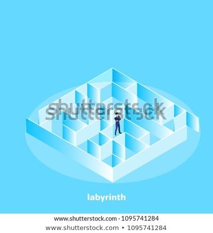 Zakenman permanente midden doolhof jonge 3D Stockfoto © ra2studio