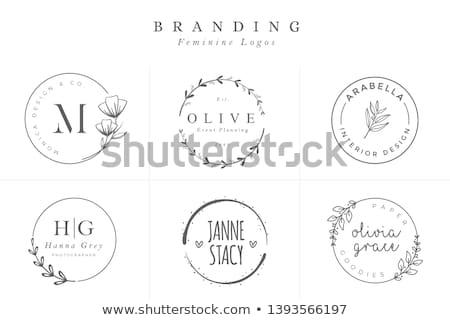 Floral Dekor Fanfare logo Blume dekorativ Stock foto © Terriana