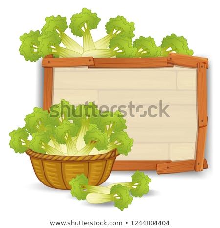 корзины сельдерей баннер иллюстрация древесины Сток-фото © colematt