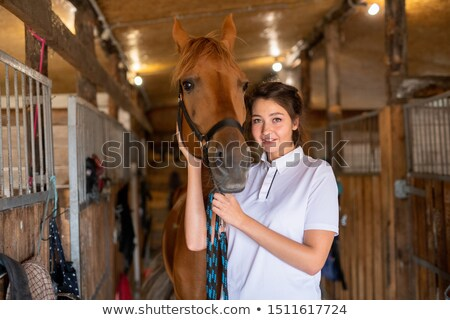 Pretty young smiling brunette keeping one hand by muzzle of purebred brown mare Stock photo © pressmaster