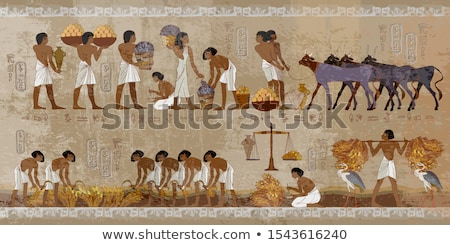 Antica Egitto geroglifico iscritto segno muro di pietra Foto d'archivio © AlessandroZocc