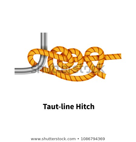 Taut-line Hitch sea knot. Bright colorful how-to guide on white Stock photo © evgeny89