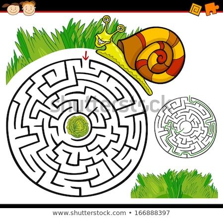 Cartoon istruzione labirinto labirinto gioco divertente Foto d'archivio © natali_brill