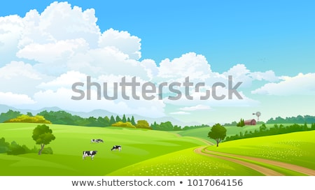 Stock photo: path on grass field