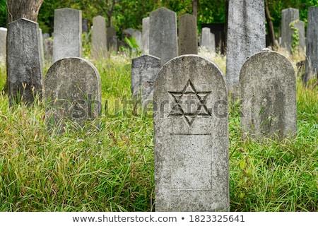 Old Tombstone in Vienna Stock photo © photoblueice