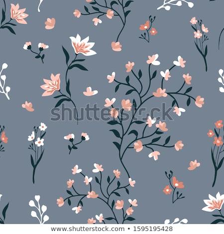 cseresznye · háttér · vektor · gyümölcs · ikon · szövet - stock fotó © Hermione