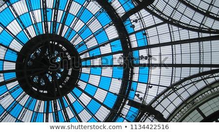 the grand palais stock photo © cynoclub
