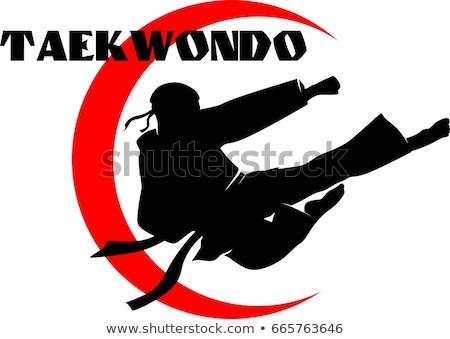 Athlete Taekwondo fighters Stock photo © sahua