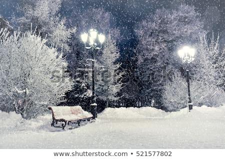 снега · парка · скамейке · зима · пейзаж · покрытый - Сток-фото © kaycee