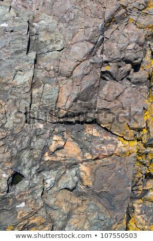 рельеф · рок · природного · каменные · пластина - Сток-фото © latent
