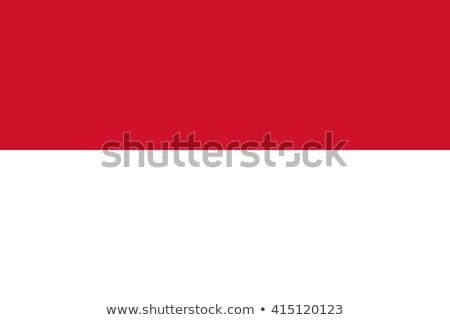 kleuren · Indonesië · jas · armen · kaart · vlag - stockfoto © perysty