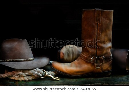 kovboy · şapkası · siyah · vektör · ikon · dizayn · arka · plan - stok fotoğraf © sharpner