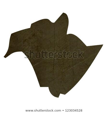 Dark silhouetted map of New Brunswick Stock photo © speedfighter
