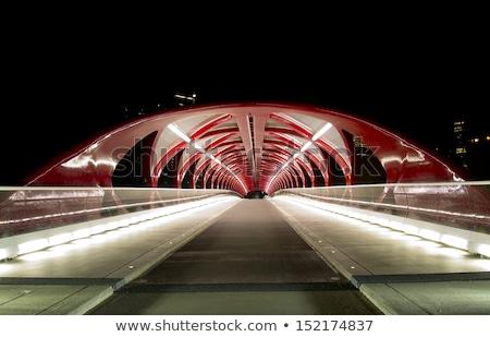 カルガリー 歩行者 橋 弓 川 冬 ストックフォト © jewhyte