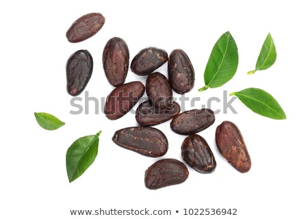 Cacao beans isolated on white background Stock photo © joannawnuk