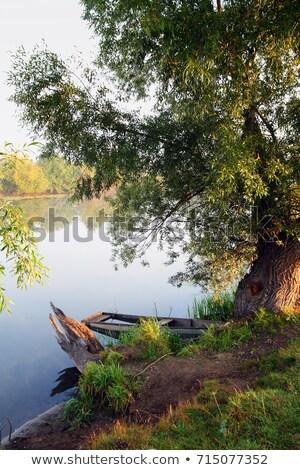 boot · oude · water · zee · meer · kabel - stockfoto © mikko
