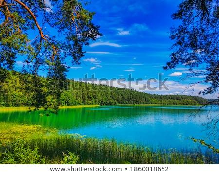 Esmeralda lago nuvens madeira floresta folha Foto stock © meinzahn