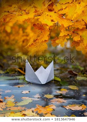 őszi · levelek · tavacska · fedett · zöld · vízi · növények - stock fotó © silkenphotography