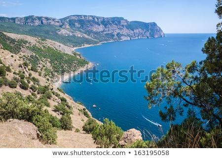 Verão ver praia preto mar Ucrânia Foto stock © bloodua