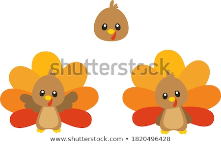 vector turkey clipart for thanksgiving day  Stock photo © freesoulproduction
