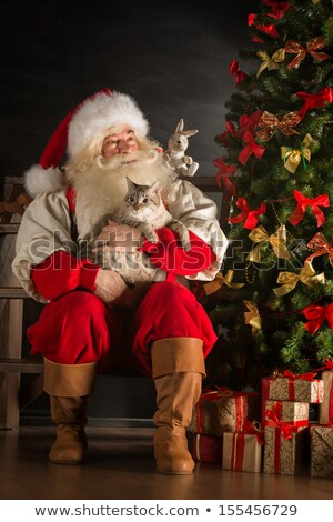 Stock fotó: Santa Claus Sitting Near Christmas Tree And Embracing His Cat