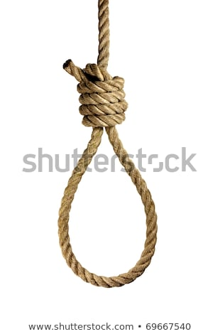 rope with a hangmans noose stock photo © nito