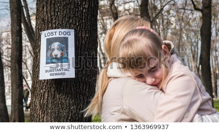 Lost Pet Stock photo © Lightsource
