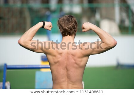 Muscular back Stock photo © stokkete