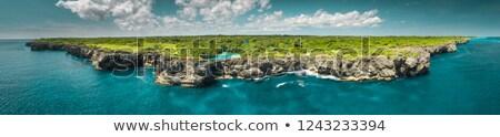 Blue Lagoon island seascape panorama stock photo © ottoduplessis