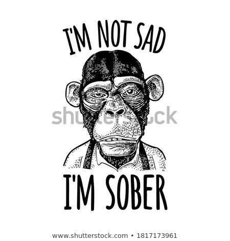 обезьяны · бизнеса · градиенты · дружественный · печати · легкий - Сток-фото © Davorr
