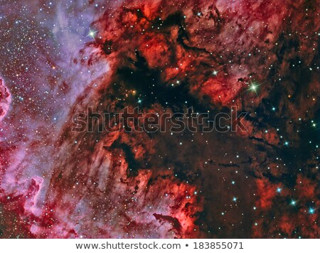 Gulf of Mexico in the North America Nebula NGC7000 stock photo © rwittich