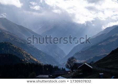 グルジア 山 森林 村 風景 ストックフォト © Kor