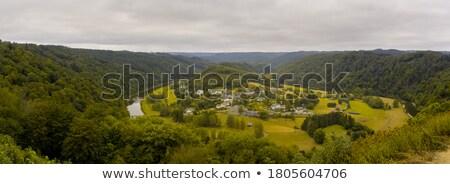 Belgium panoráma panorámakép légifelvétel fű erdő Stock fotó © smartin69