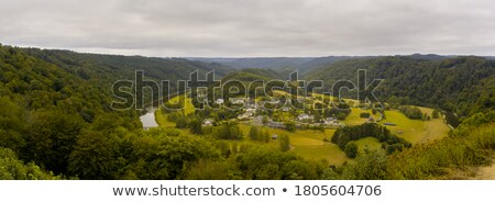 Belçika panorama panoramik çim orman Stok fotoğraf © smartin69