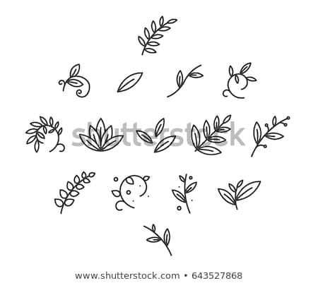 Zdjęcia stock: Floral Icon Set