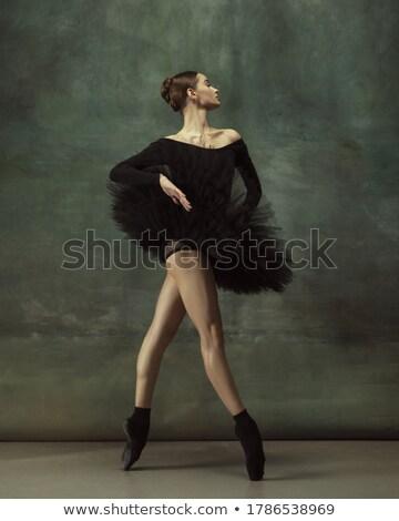 Retrato jovem gracioso bailarina bronze metal Foto stock © bezikus