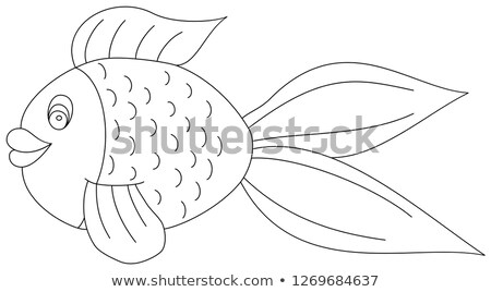 Goldfish, Color Illustration Stock photo © Morphart