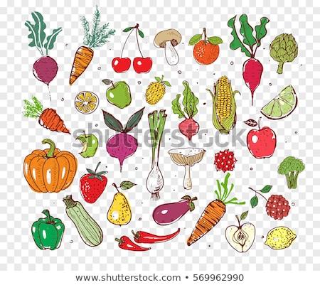 cocina · cocina · garabato · establecer · vector · alimentos - foto stock © netkov1