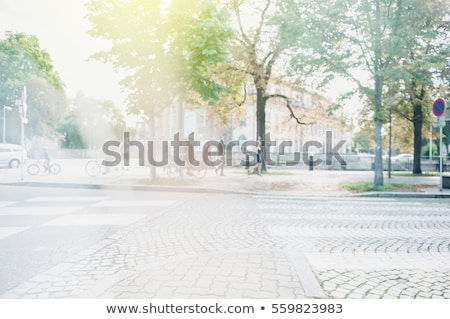 Pedestrians on the street as blur urban background Stock photo © stevanovicigor