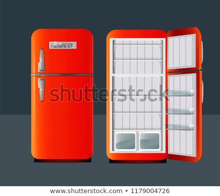 Retró stílus házi hűtőszekrény fehér hűtőszekrény mélyhűtő Stock fotó © adrian_n