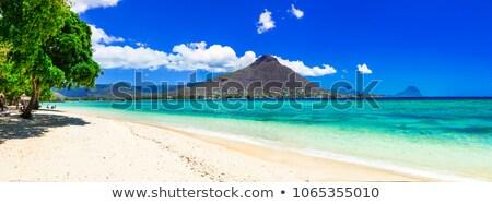 Maldív-szigetek · sziget · káprázatos · türkiz · víz · gyönyörű - stock fotó © luissantos84