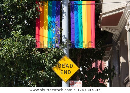 Dead End sign with rainbow Stock photo © bestmoose