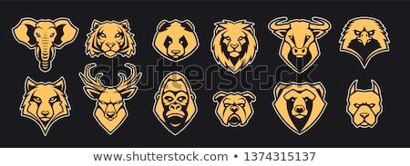 Сток-фото: Tiger Eagle Wolf Bear Logo Set Vector