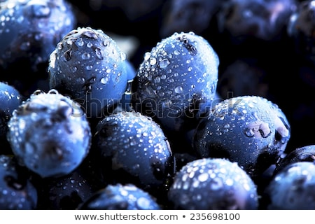 Sweet вкусный белый винограда винограда Сток-фото © Yatsenko