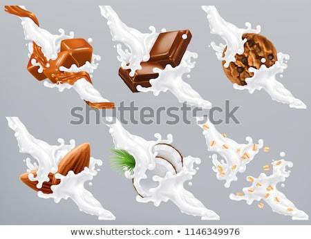 Yoghurt chocolade ontbijt biscuits kom yoghurt Stockfoto © Digifoodstock