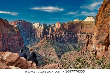 Słynny parku USA na południowy zachód charakter stromy Zdjęcia stock © CaptureLight