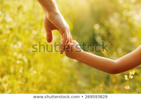 mãos · adulto · bebê · dois · homem - foto stock © -baks-
